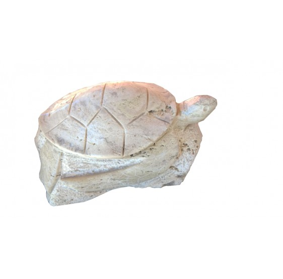 Tortuga de Marmol Blanco Beige