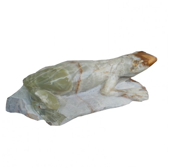 Rana Verde de Onix