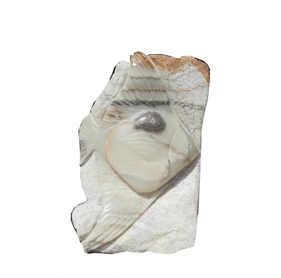 Peces de Marmol Chicos