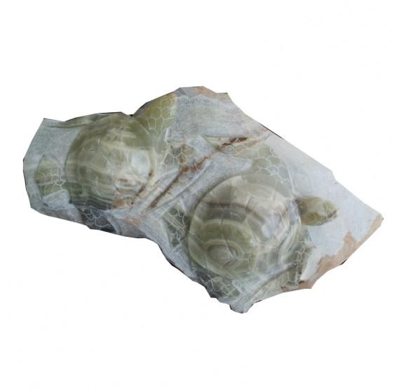 Tortugas de Onix Dobles Ch