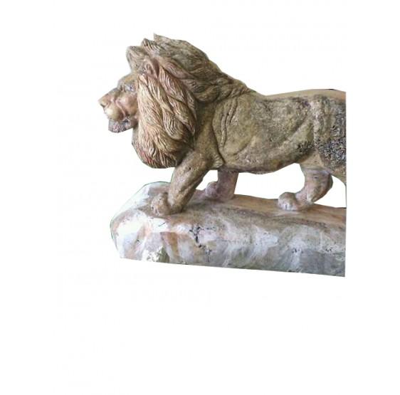 leon echado